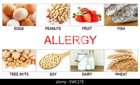 Allergy food concept. Food allergens as eggs, milk, fruits, tree nuts, peanuts, soy, wheat and fish. - Stock Photo