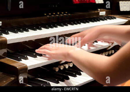 Musician hands on keyboard of organ - Stock Photo