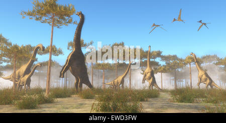 Brachiosaurus was a herbivorous sauropod dinosaur that lived in the Jurassic Age of North America. A Brachiosaurus - Stock Photo