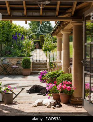 View from the loggia looking up to sunny garden with sleeping dogs and potted geraniums - Stock Photo