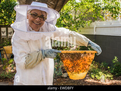 Woman bee keeper displaying her Top Bar beehive, Brisbane, Queensland, Australia - Stock Photo