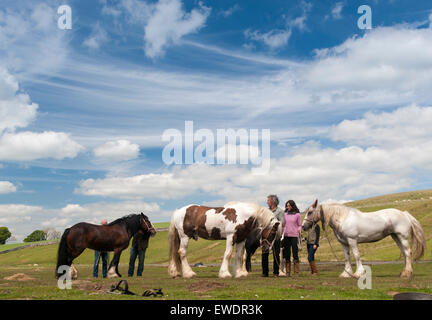 Travellers heading to the Appleby Horse Fair 2015, stop for a break at Watergap Bottom in Mallerstang near Kirkby - Stock Photo