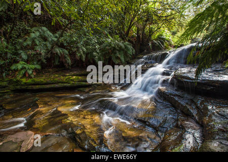 Leura Falls, Blue Mountains, Australia. - Stock Photo