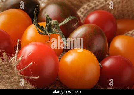 Multicolored organic Tomato's - Stock Photo