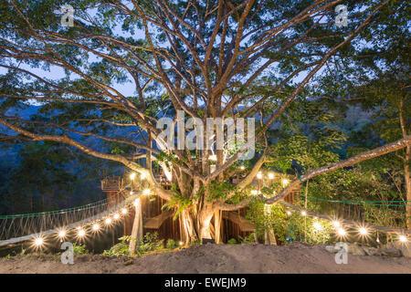 House architecture tree lamp magic - Stock Photo