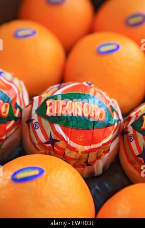 Box of Filosofo oranges from Spain - Stock Photo