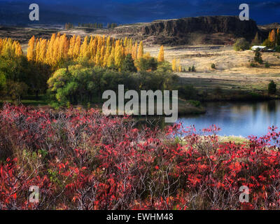 Fall color at Horesthief Lake State Park, Washington. Columbia River Gorge National Scenic Area - Stock Photo