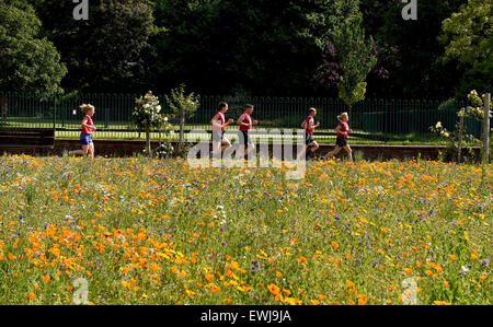 Brighton, UK. 27th June, 2015. Early morning runners enjoy the beautiful summer weather through the Preston Park - Stock Photo