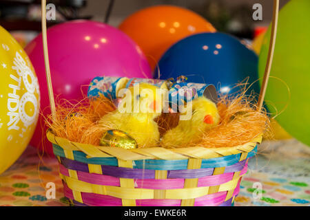 Easter chicks in a basket with coloured balloons in the background - Stock Photo
