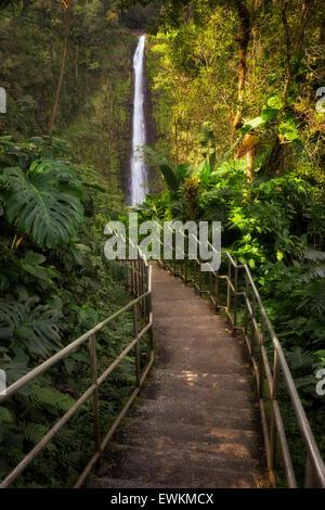 Pathway to Akaka Falls. Akaka Falls State Park. Hawaii, The Big Island - Stock Photo