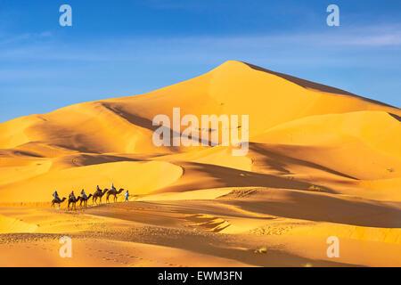 Tourists ride on camels, Erg Chebbi desert near Merzouga, Sahara, Morocco - Stock Photo