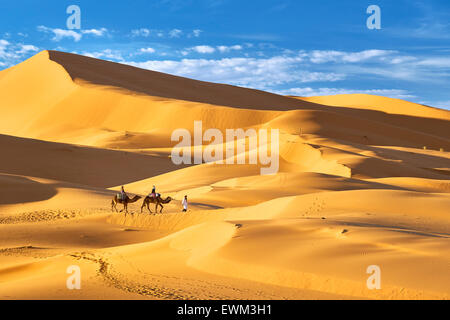 Tourists ride on camels, Erg Chebbi desert near Merzouga, Sahara, Morocco - Stock Photo