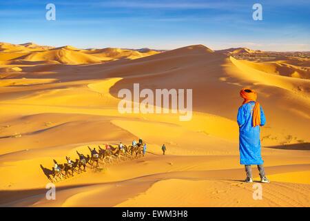 Berber man looking at camel caravan, Erg Chebbi desert near Merzouga, Sahara, Morocco - Stock Photo