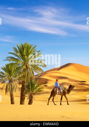 Berber man ride on the camel, Erg Chebbi desert near Merzouga, Sahara, Morocco - Stock Photo