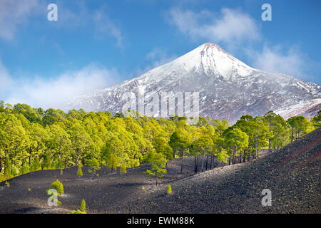 View of Teide Volcano Mount, Tenerife, Canary Islands, Spain - Stock Photo