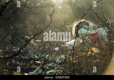 The wreckage in Willenhall Wood, near Coventry Airport following the Boeing 737 crash, which killed five people. - Stock Photo
