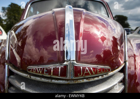 UK, England, Cheshire, Chelford, Astle Park Traction Engine Rally, radiator badge and front of Jowett Javelin car - Stock Photo