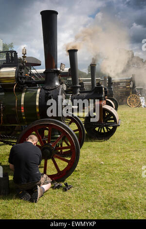 UK, England, Cheshire, Chelford, Astle Park Traction Engine Rally, line of engines smoking - Stock Photo
