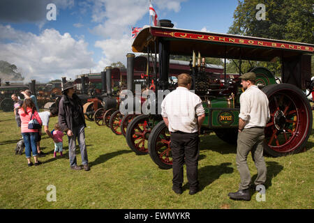 UK, England, Cheshire, Chelford, Astle Park Traction Engine Rally, vistors viewing line of engines - Stock Photo