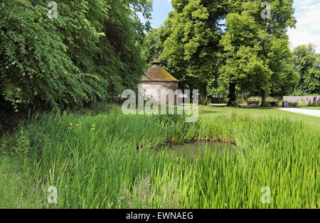 Water flora around a pond with old circular building in the background - Stock Photo