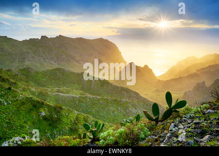 Sunset at Tenerife, Canary Islands, Spain - Stock Photo