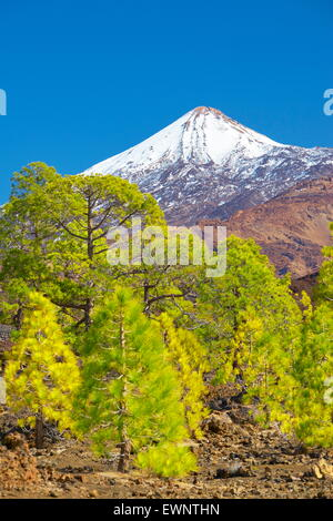 El Teide Mount, Tenerife, Canary Islands, Spain - Stock Photo