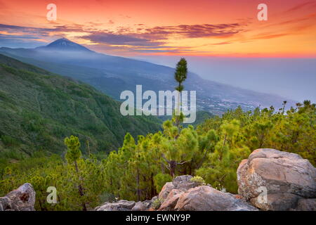 Teide Mount landscape at sunset time, Tenerife, Canary Islands, Spain - Stock Photo