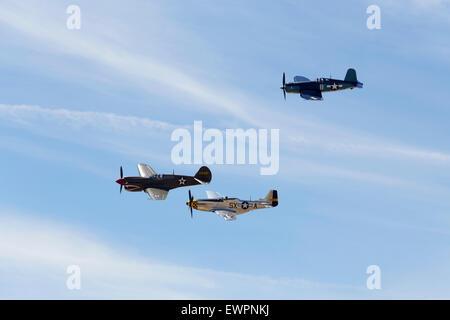 WWII Warbirds - Stock Photo