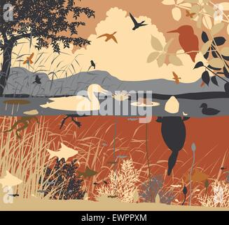 EPS8 editable vector illustration of diverse wildlife in a freshwater ecosystem with all figures as separate objects - Stock Photo