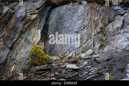 The Ballachulish Slate Quarry - Stock Photo