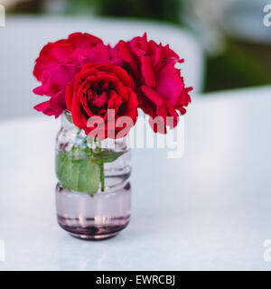 Red roses in a vase - Stock Photo