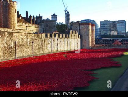 Tower Bridge Ceramic Poppies - Stock Photo