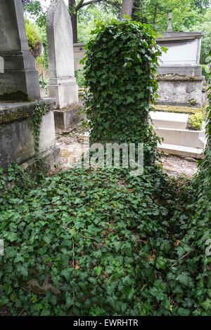 Paris,France,Pere,Lachaise,cemetery,Paris,ivy,covered,grave - Stock Photo