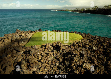 Small patch of lawn in lava rock. Hawaii, The Big Island. - Stock Photo
