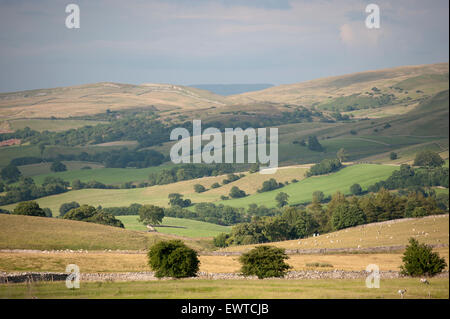 Landscape in the Upper Eden Valley near Kirkby Stephen, Cumbria, UK. - Stock Photo