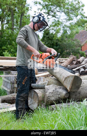 Herefordshire, UK. Tree surgeon / arborist cuts cord wood into logs with a chainsaw ready for burning . © Becky - Stock Photo