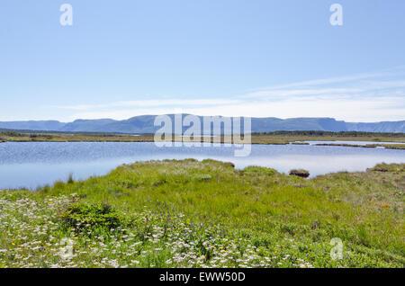 Beach in Gros Morne National Park, Newfoundland - Stock Photo