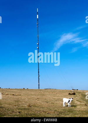 Mast at Caradon Hill on Bodmin Moor, Cornwall. - Stock Photo