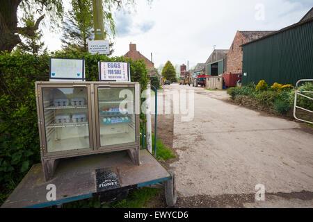 Farm gate sales, East Yorkshire - Stock Photo