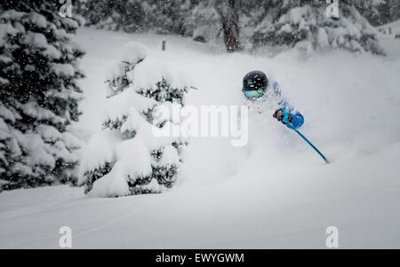 A male skier enjoying deep powder skiing in the Austrian Alps. - Stock Photo