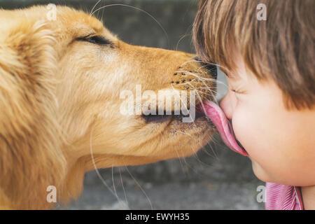 Dog licking a boy's face - Stock Photo