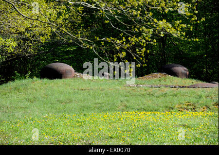 Ouvrage Hackenberg,Maginot line,WWII,Veckring,Moselle,Lorraine,France - Stock Photo