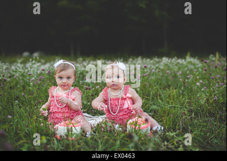 Portrait of baby twin sisters sitting in wildflower meadow eating birthday cake - Stock Photo