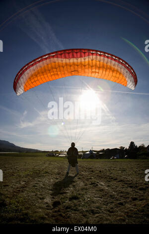 Mature male paraglider landing with parachute, Mount Saleve, Geneva, Switzerland - Stock Photo