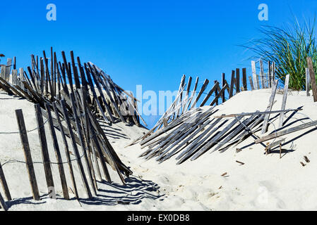 Weathered wind fence along a beach path helps fight wind drift and dune erosion, Truro, Cape Cod, Massachusetts, - Stock Photo