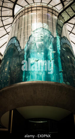 Aquadom lift aquarium at Radisson Blu Hotel in Berlin-Mitte - Stock Photo