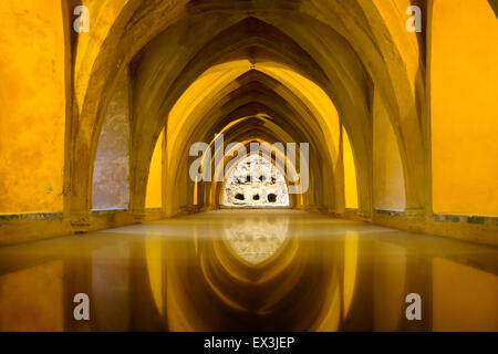 The Los Banos de Dona Maria de Padilla (Baths of Lady Maria de Padilla) . In the Alcazar of Seville, Spain. - Stock Photo