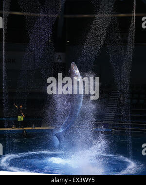Tokyo. 6th July, 2015. Photo taken on July 6, 2015 shows a dolphin jumping into the air during a media preview of - Stock Photo