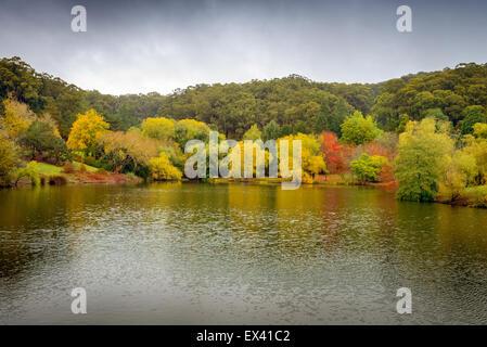Autumn Landscape. Panorama of autumn trees around the pond - Stock Photo