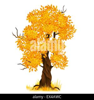 Vector autumn tree isolated on white, vector illustration - Stock Photo